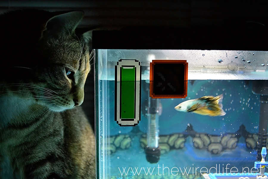 acuario legend of zelda
