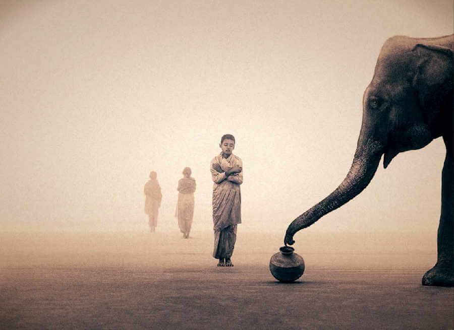 Fotos de Gregory Colbert